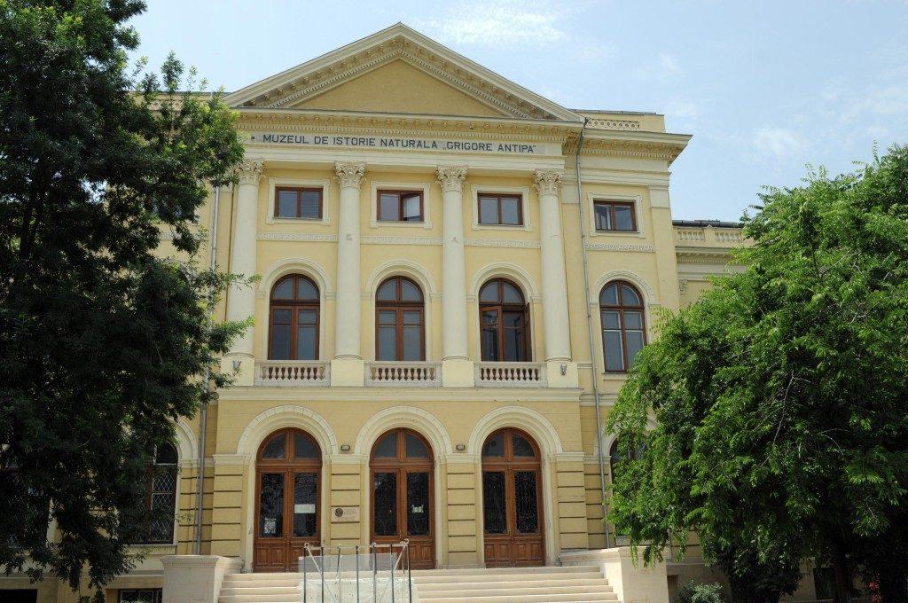 Muzee si parcuri 9